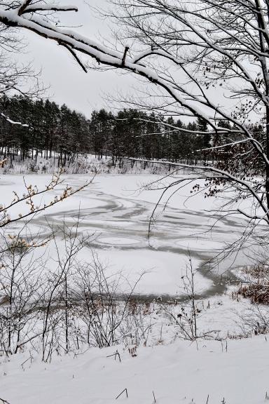 snowy Gaylord waterwhirls(7)